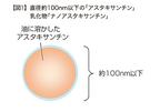 アスタキサンチンは微粒子化すると抗酸化力が高まる