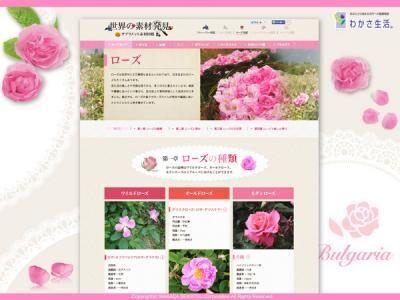 バラ専門サイト「ローズ図鑑」オープン!
