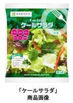 ケールの栄養丸ごとサラダ「ケールサラダ」販売エリア大幅に拡大!