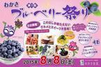 ブルーベリーをいろいろ楽しもう!京都にて「第1回ブルーベリー祭り」!