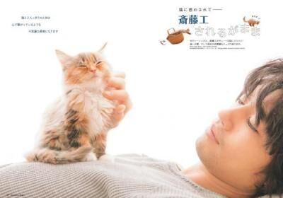 にゃんチャージ!自由で無邪気な猫たちに癒やされる