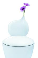 トイレがオシャレに大変身!花を生けられるってホント!?
