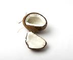 高品質のヴァージンココナッツオイルが発売開始