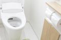 痔の痛みによる変化1位は「シャワートイレを探す」