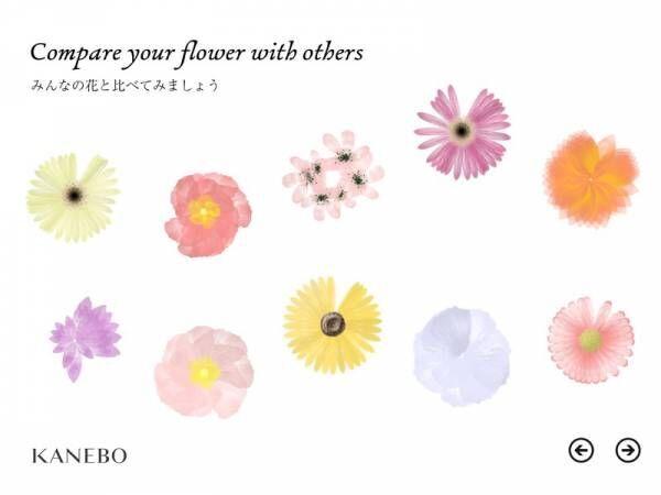 肌へのふれ方を花の咲き方としてビジュアル化したツールを導入