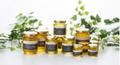 国産生蜂蜜のスキンケア製品のために プロジェクトがスタート