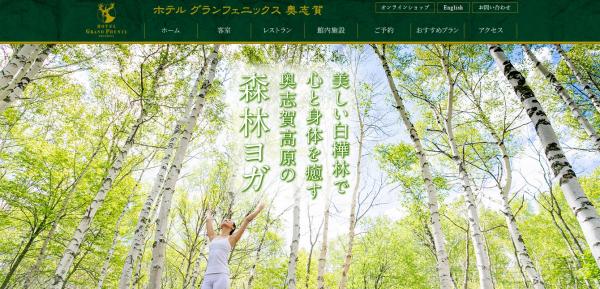 白樺林でリラックス効果絶大!奥志賀高原での「森林ヨガ」