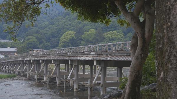 定番になる理由がここに。徒歩で楽しむ京都「嵐山」
