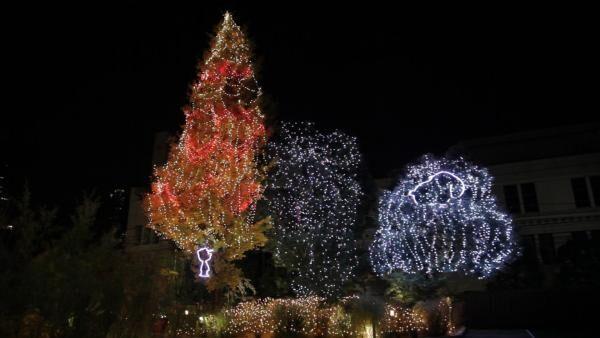 もちろんインスタ映えもバッチリ♡ 「スヌーピーミュージアム」で楽しむ六本木のクリスマス
