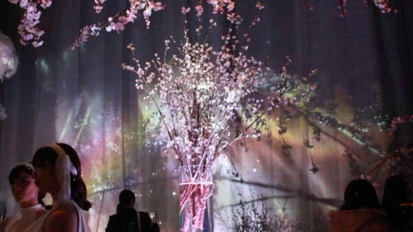 """5感で感じる""""花の世界"""" 圧倒的なアート祭典「FLOWERS by NAKED 2017 -立春-」"""