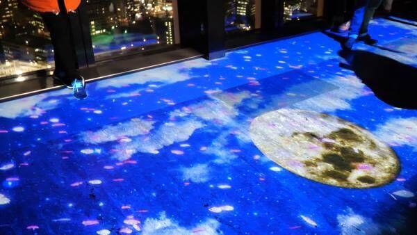 夜景に映し出される映像美。東京タワーで楽しむ夜桜体験