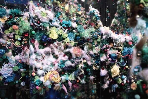 最新のテクノロジーによる参加型の演出による新しい「睡蓮」の世界が、箱根に登場!