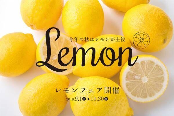 秋の宮崎を堪能!「レモンフェア」開催
