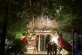 5周年を迎える国内最大級の野外映画フェス「夜空と交差する森の映画祭 2018」