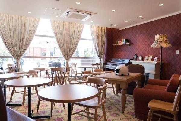 南町田グランベリーパークに「ひつじのショーンビレッジ ショップ&カフェ」が登場