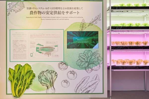 食の恵みに感謝!「デジタル収穫祭 in Ginza」