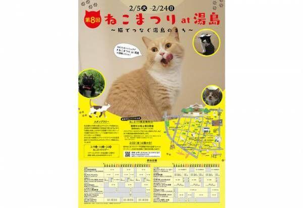 【2019年版】2月22日は猫の日!猫好き必見の猫イベント特集