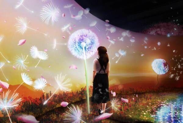 デジタルアートのお花見!日本橋で「フラワーズバイネイキッド2020‐桜‐」を開催