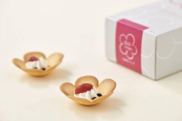 おうち時間が華やかでHAPPYなひと時になりますようにとの想いから「大阪花ラング」公式オンラインショップ販売開始!