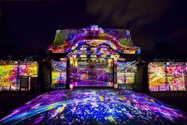 花の体感型アート展「ネイキッド フラワーズ」京都・二条城にて夜桜×アートのプロジェクションマッピング開催!