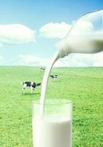 生乳に近い風味が味わえる「ノンホモ牛乳」が10月より全国デビュー!