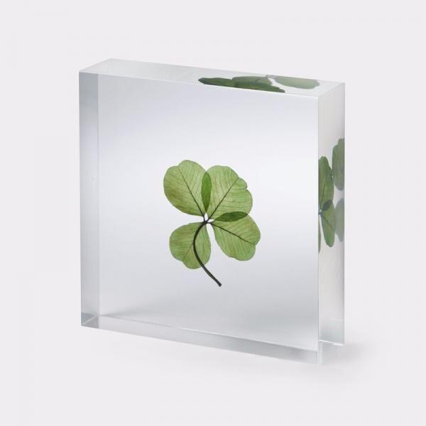 【MoMA Design Store】秋冬の新商品150点以上が登場♪