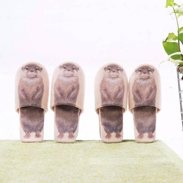 カワウソが玄関でお出迎え♪フェリシモのユーモア雑貨ブランドから発売の「自立するカワウソスリッパ」でスリッパラックいらず!