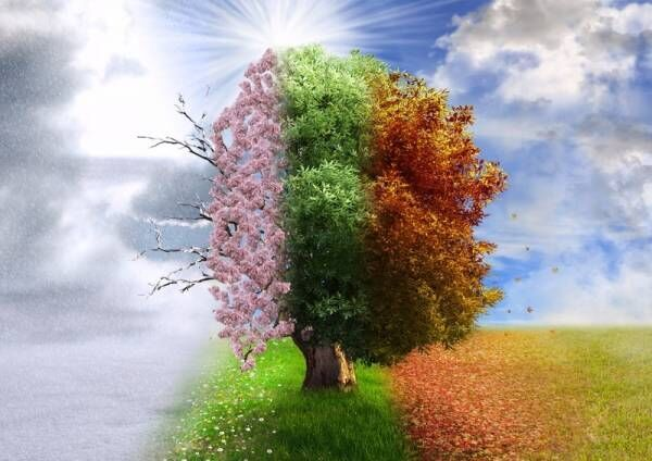 塗装にオススメの季節はいつ?塗装できない気候条件や好ましい季節とは?