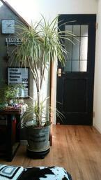 【DIY】アンティーク風インテリアでおしゃれなお部屋に!簡単なアイデアをご紹介