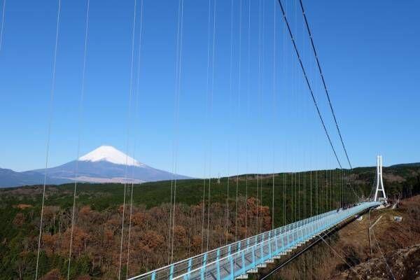 富士山を観に行こう!空気が澄みわたる冬だから楽しめる、おすすめバスツアーを紹介