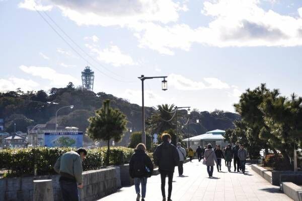 【お散歩シリーズ#4】海と富士山が見える街「江ノ島・鵠沼海岸」でローカル気分を味わおう
