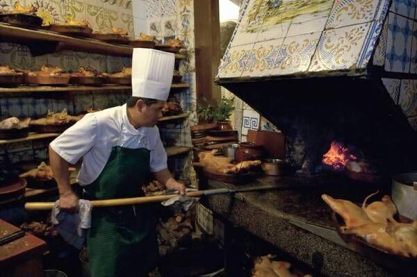 【ねこのふらり一人旅 #17】ちょっと奮発!世界最古のレストランでディナーを楽しむ