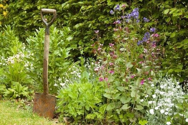お庭をセンスアップしたいときに使えるイングリッシュガーデンで見かけるアレ