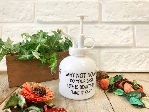 〔セリア〕のスプレーボトルがオシャレ!観葉植物にはもちろん飾るだけでもお部屋の雰囲気がアップ♪