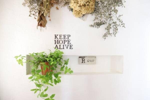 これからの季節にピッタリな植物のある暮らし、始めませんか?