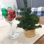 〔ナチュラルキッチン アンド〕のミニクリスマスツリーがかわいい♡トータル300円で楽しめるって本当?