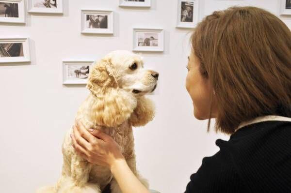 愛犬のケアを学べる!〔犬塾〕でわんちゃんのシャンプーレッスンを体験してみた♪
