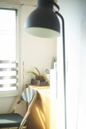 【あの人の部屋 #10】本と猫。午後の日差し。三島由紀夫を好む人