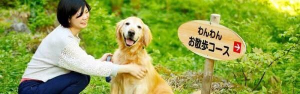 【東海編】愛するわんちゃんとプチ旅行♡わんちゃんも泊まれるホテル3選♡