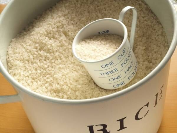 【楽天】保存環境に合わせた素材でおしゃれに収納♪米びつおすすめ6選!
