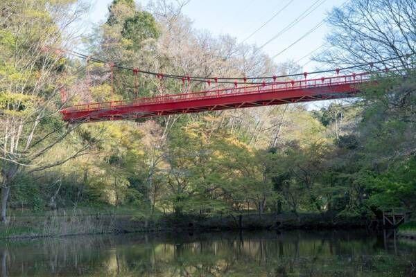 千葉の公園でピクニック♪休日を満喫できる素敵なスポットを紹介!
