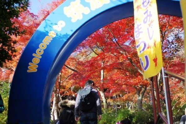 【関東】初心者でも挑戦しやすい♪紅葉が楽しめるハイキングスポット