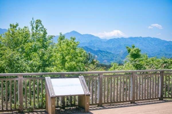 週末はファミリーで楽しもう!京王線沿いのテーマパークや高尾山をフリーパスでお得に観光♪