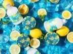 """""""COOLING コレクション""""第二弾「スチームクリーム ハッカ&アロエ レモン」を2020年4月15日(水)より発売!"""