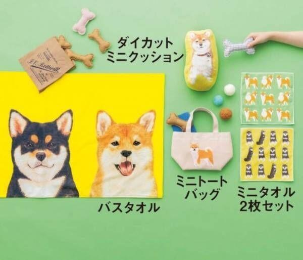 柴犬と、目が合うたびに癒される♪「もふもふころりん 柴犬雑貨コレクション」がフェリシモ『YOU+MORE!』から誕生