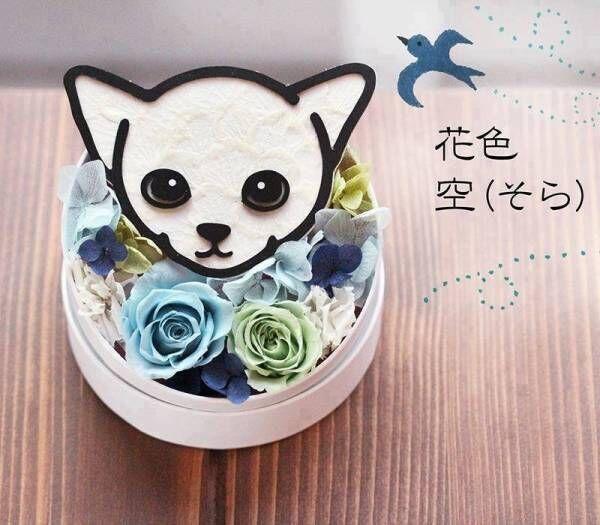 離れて暮らすママに直送できる!「動物のお花屋さんマイペリドット」2020年度の母の日ギフトぺージをオープン
