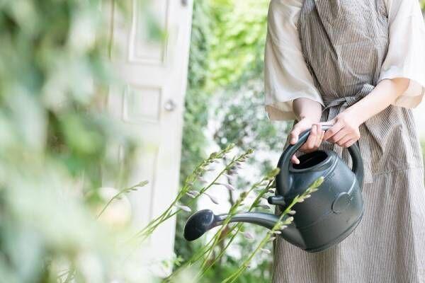 【DIY】雑草対策できる「赤シラス」をお得にゲット!お庭で過ごす時間を豊かにしよう!
