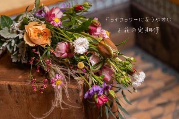 【お花のサブスク】ドライフラワーになりやすいお花を《毎月・定額》でお届け。greenpieceがsubscにオープン!
