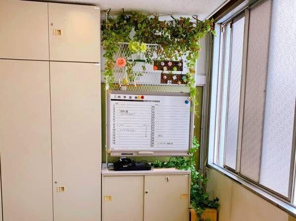 DIYでオフィスに緑を増やしてみた!