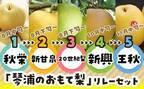 5種類の梨を堪能できる「おもて梨」!鳥取の魅力が溢れるおいしい返礼品♡